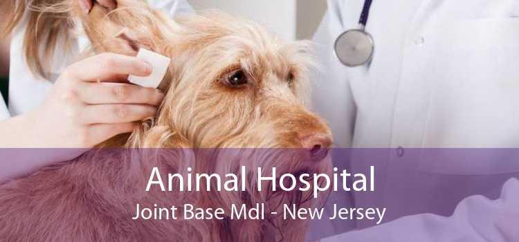 Animal Hospital Joint Base Mdl - New Jersey