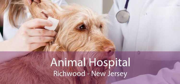 Animal Hospital Richwood - New Jersey