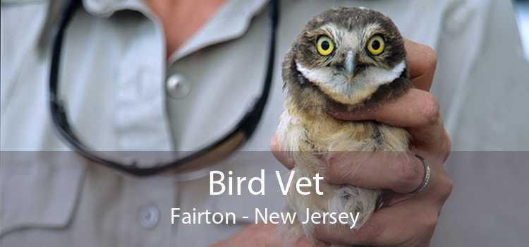 Bird Vet Fairton - New Jersey