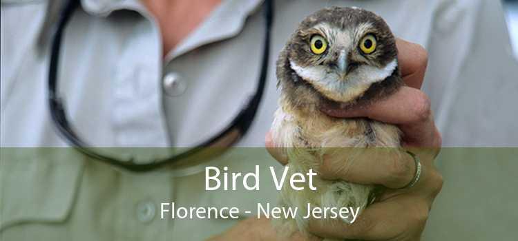 Bird Vet Florence - New Jersey