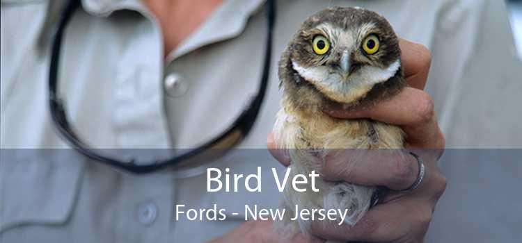 Bird Vet Fords - New Jersey