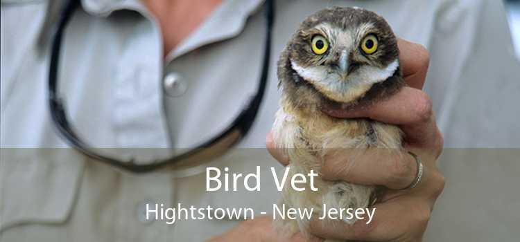 Bird Vet Hightstown - New Jersey