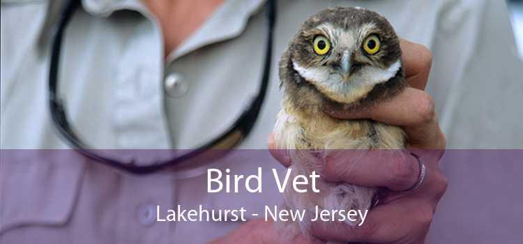 Bird Vet Lakehurst - New Jersey