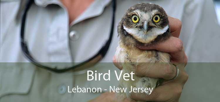 Bird Vet Lebanon - New Jersey