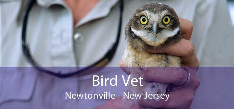 Bird Vet Newtonville - New Jersey