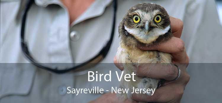 Bird Vet Sayreville - New Jersey