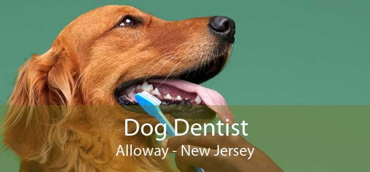 Dog Dentist Alloway - New Jersey