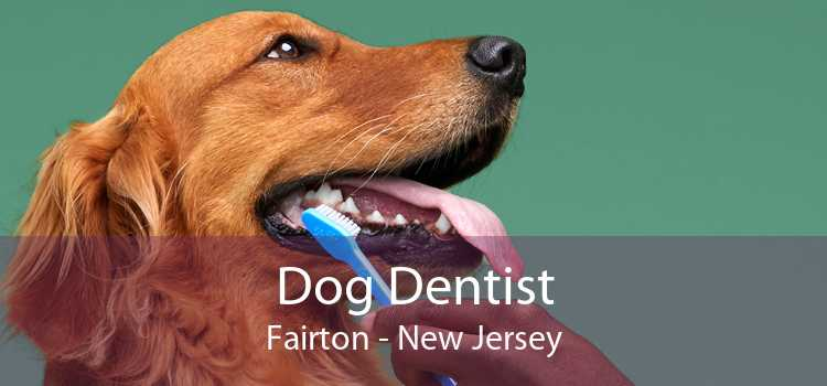 Dog Dentist Fairton - New Jersey