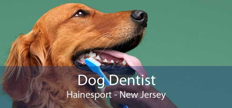Dog Dentist Hainesport - New Jersey