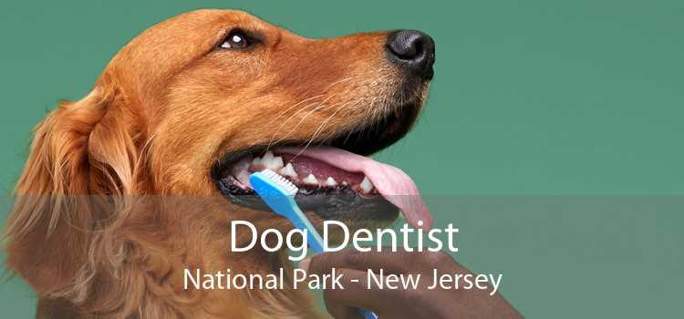 Dog Dentist National Park - New Jersey