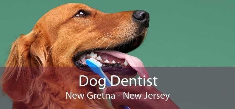 Dog Dentist New Gretna - New Jersey