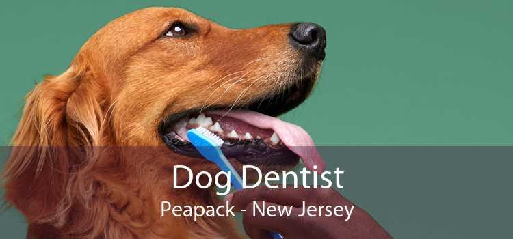 Dog Dentist Peapack - New Jersey