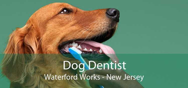 Dog Dentist Waterford Works - New Jersey