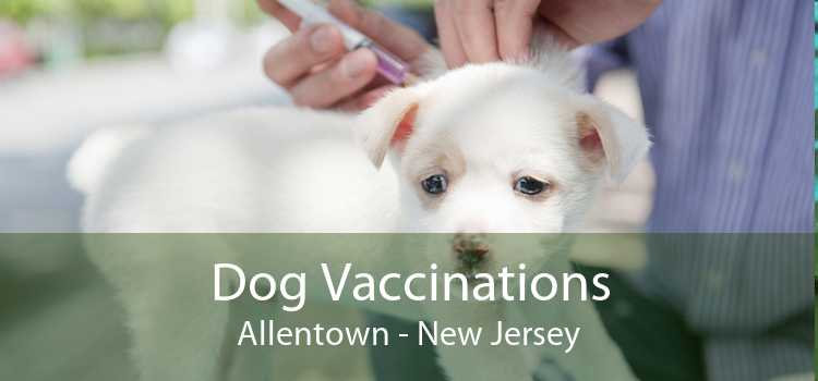 Dog Vaccinations Allentown - New Jersey
