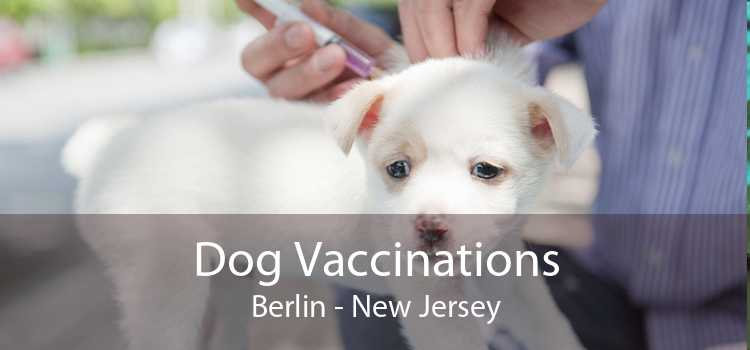 Dog Vaccinations Berlin - New Jersey
