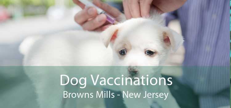 Dog Vaccinations Browns Mills - New Jersey