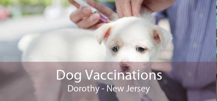 Dog Vaccinations Dorothy - New Jersey
