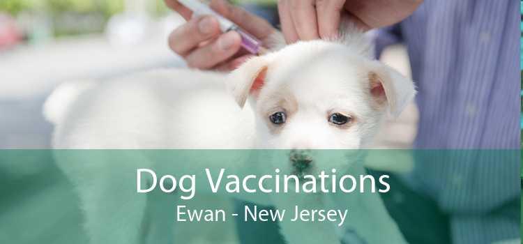 Dog Vaccinations Ewan - New Jersey