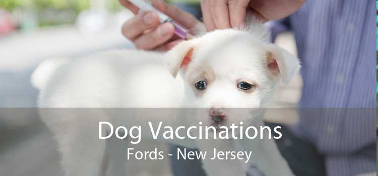 Dog Vaccinations Fords - New Jersey