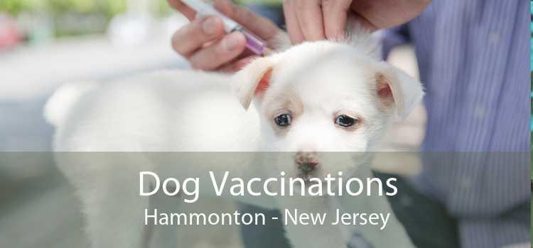 Dog Vaccinations Hammonton - New Jersey