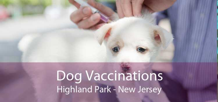 Dog Vaccinations Highland Park - New Jersey