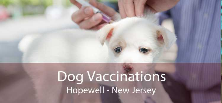 Dog Vaccinations Hopewell - New Jersey
