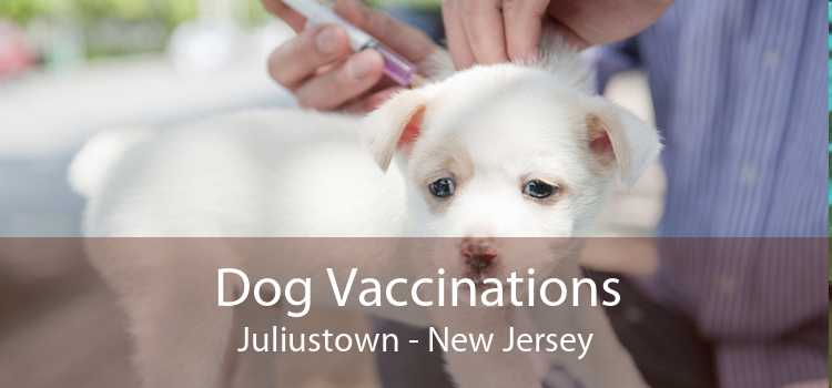 Dog Vaccinations Juliustown - New Jersey