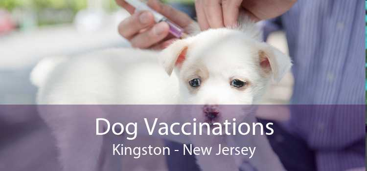 Dog Vaccinations Kingston - New Jersey