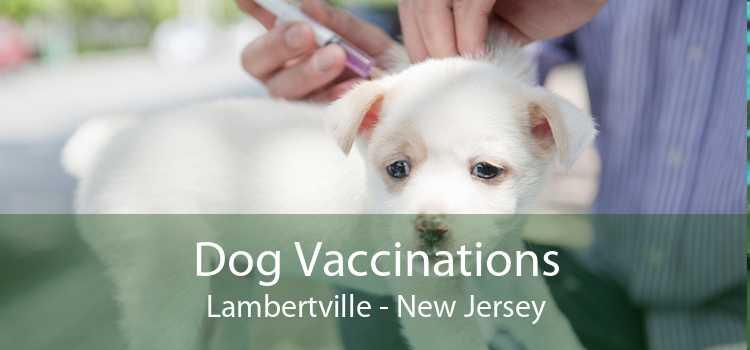 Dog Vaccinations Lambertville - New Jersey