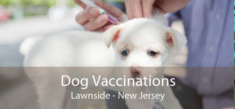 Dog Vaccinations Lawnside - New Jersey