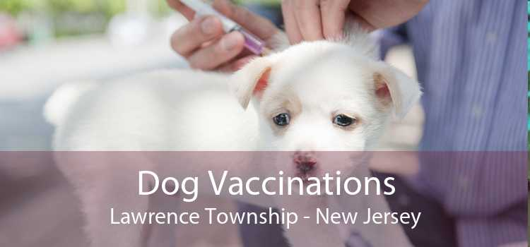 Dog Vaccinations Lawrence Township - New Jersey