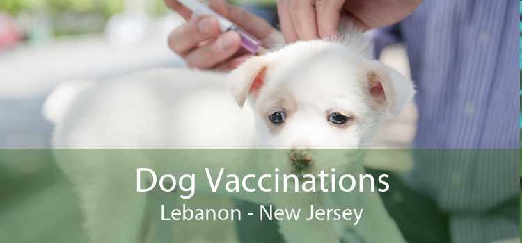 Dog Vaccinations Lebanon - New Jersey