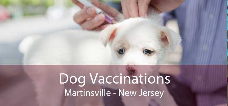 Dog Vaccinations Martinsville - New Jersey