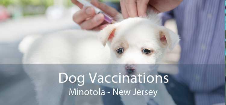 Dog Vaccinations Minotola - New Jersey