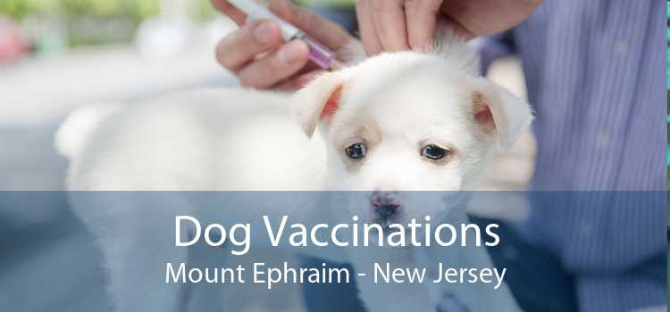 Dog Vaccinations Mount Ephraim - New Jersey