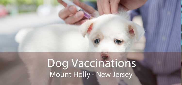 Dog Vaccinations Mount Holly - New Jersey