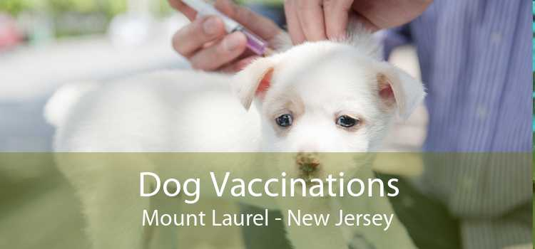 Dog Vaccinations Mount Laurel - New Jersey