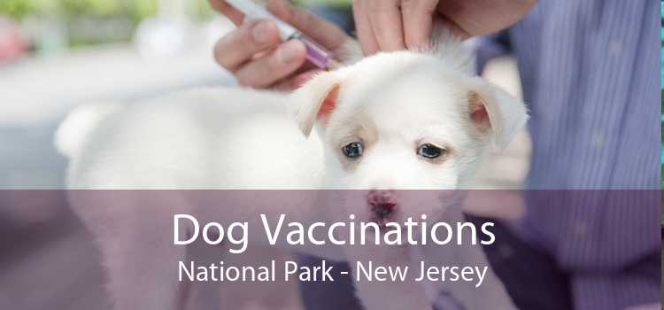 Dog Vaccinations National Park - New Jersey
