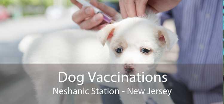 Dog Vaccinations Neshanic Station - New Jersey