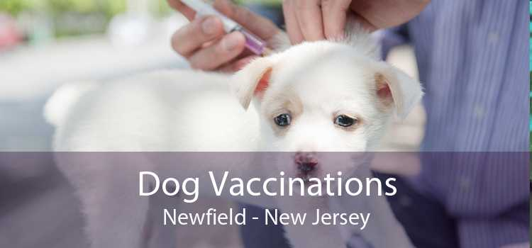 Dog Vaccinations Newfield - New Jersey