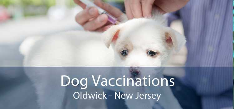 Dog Vaccinations Oldwick - New Jersey
