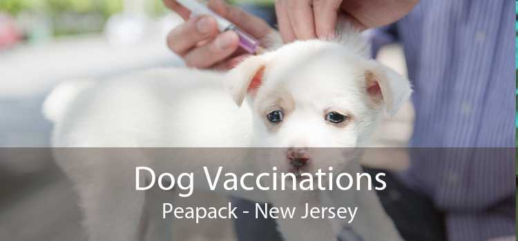 Dog Vaccinations Peapack - New Jersey