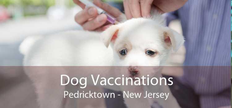 Dog Vaccinations Pedricktown - New Jersey