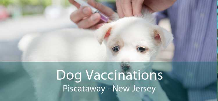 Dog Vaccinations Piscataway - New Jersey