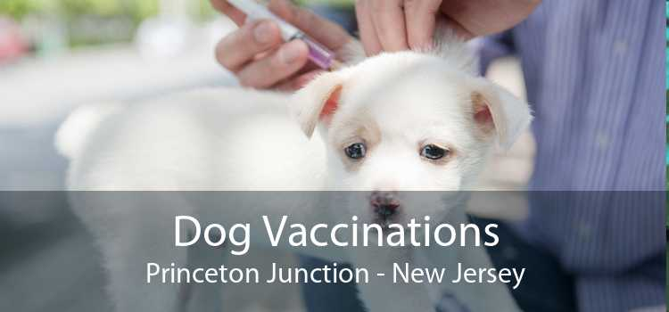 Dog Vaccinations Princeton Junction - New Jersey