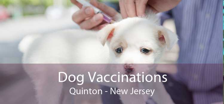 Dog Vaccinations Quinton - New Jersey
