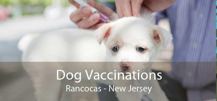 Dog Vaccinations Rancocas - New Jersey