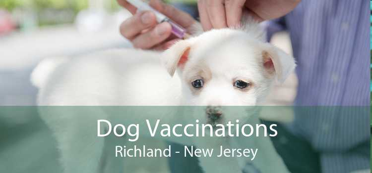 Dog Vaccinations Richland - New Jersey