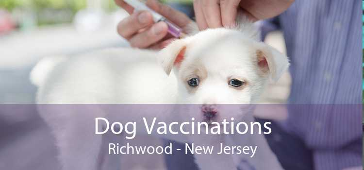 Dog Vaccinations Richwood - New Jersey