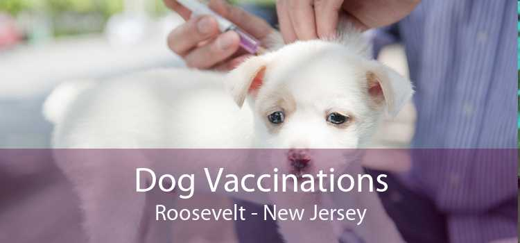 Dog Vaccinations Roosevelt - New Jersey